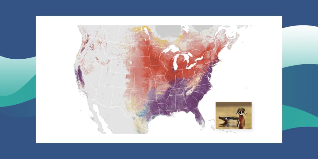 mapa de EEUU_estudios avifauna ciencia ciudadana