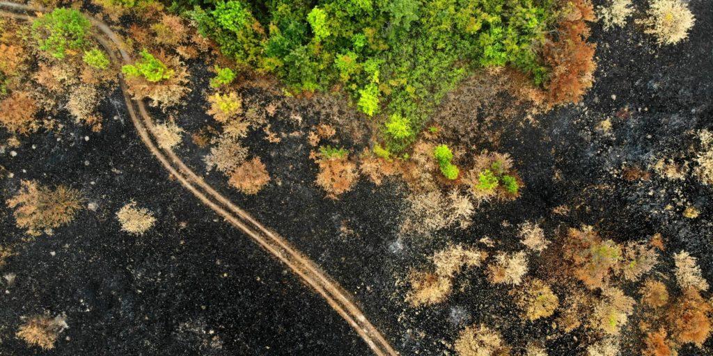 incendio forestal a vista de dron